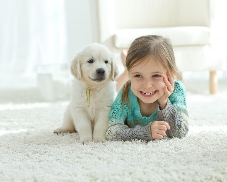 5 raisons pour lesquelles vous avez besoin d'un tapis dans votre maison